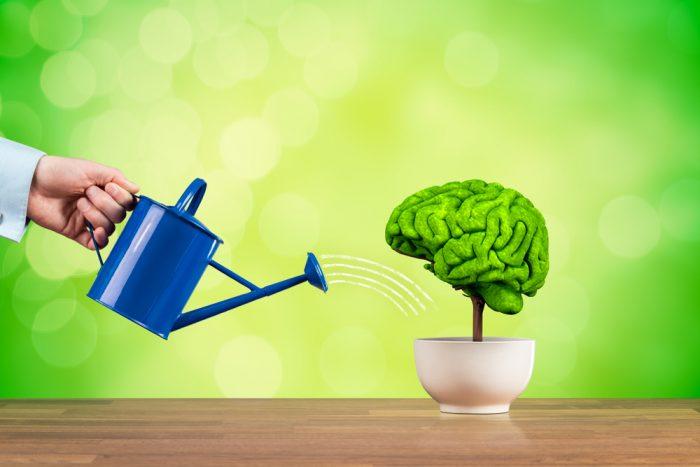 Mindset de crescimento: do Eu para o verdadeiro sucesso